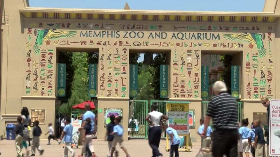 people outside Memphis Zoo